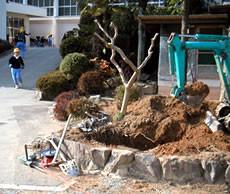 兵庫県加西市・日吉小学校