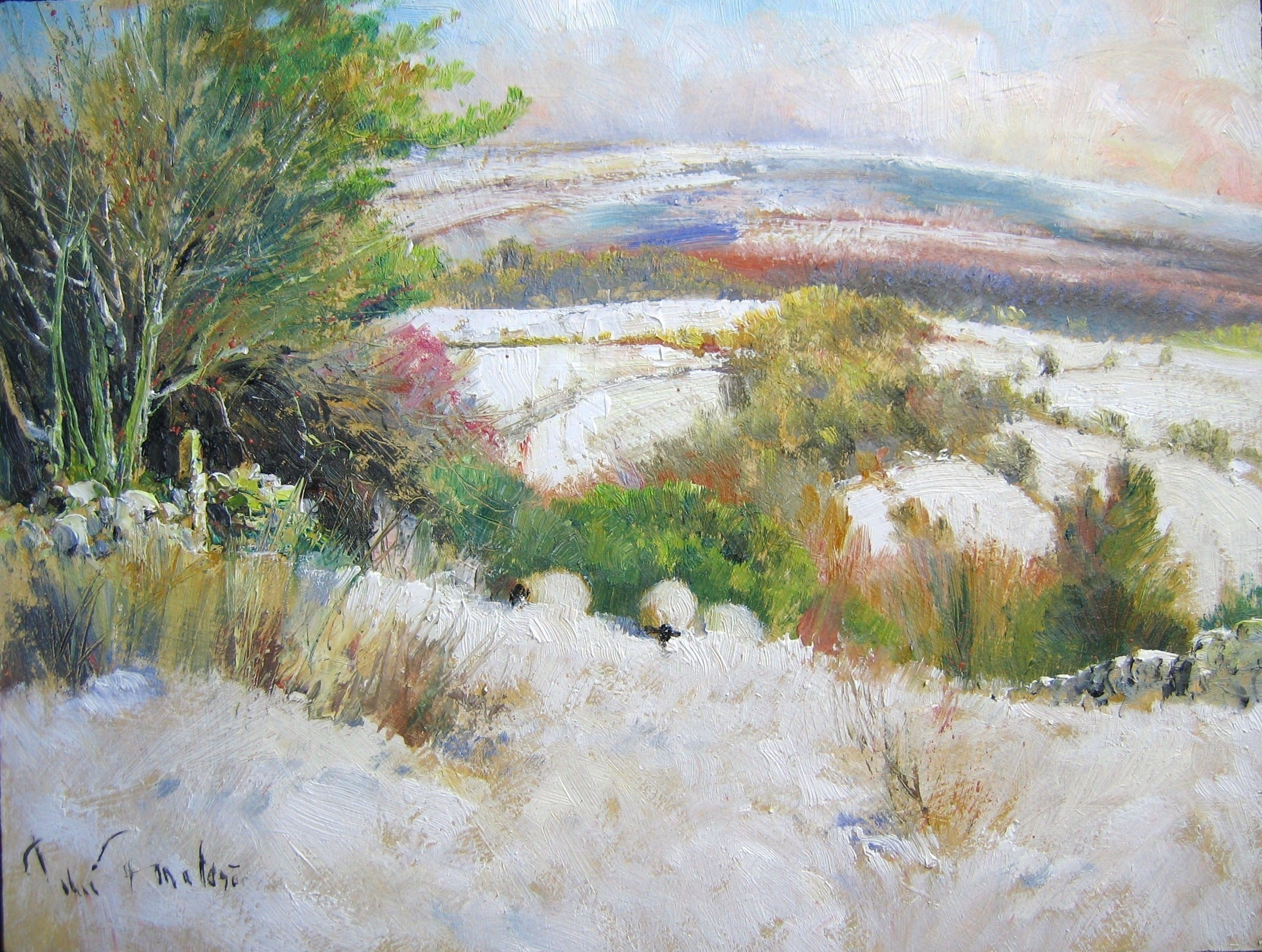 Study for early snow on Dartmoor