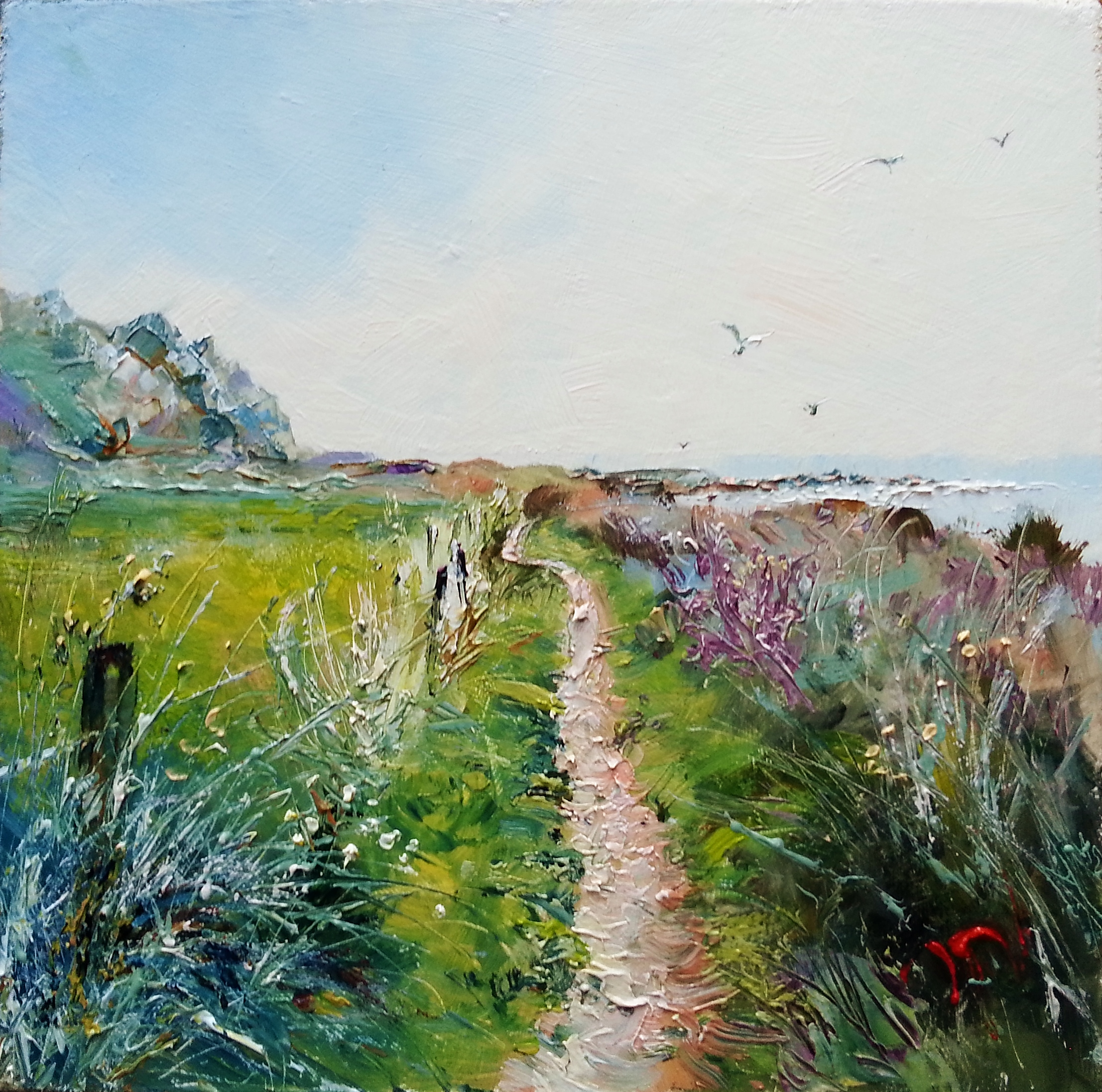 Coast Path at Prawle-6x6.2016-01-16