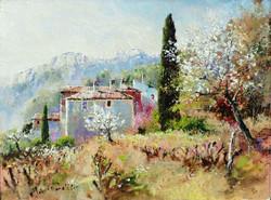Vaucluse Spring