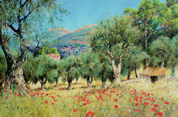 Down through the Olive Grove