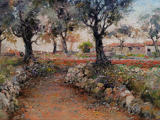 The Olive Walk At Dawn