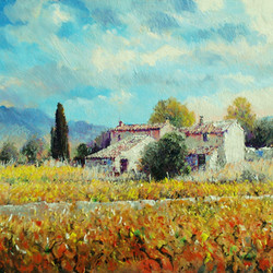 Autumn Vineyards in Provence