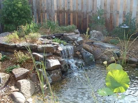 watergardens.jpg