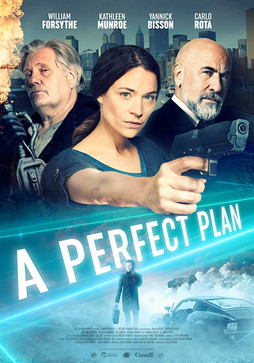A Perfect Plan Poster.jpg