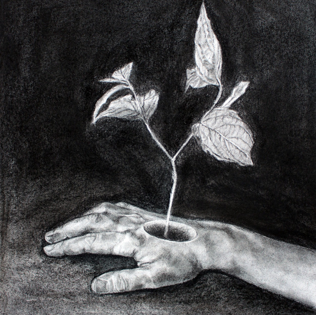 Study of the hand changing into the tree