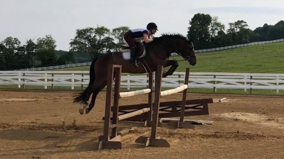 Enzo jump