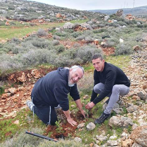 A new carob tree in Migdalim. L-R: Shmuel with our farmer, Shirel