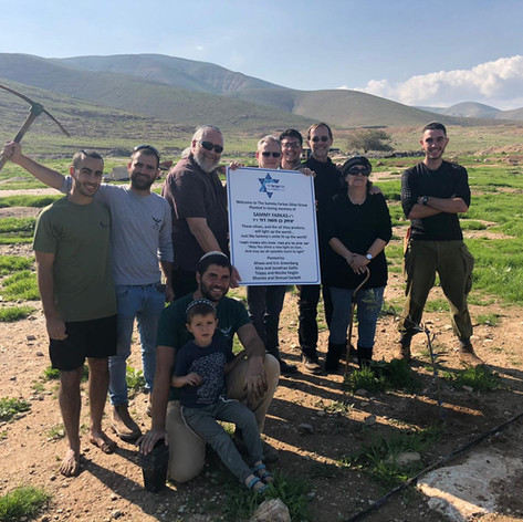 500 olive trees were planted in the new Sammy Farkas Olive Grove!!