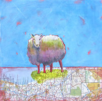sheep, map