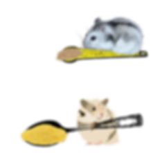 HAMSTER SPOONS.png
