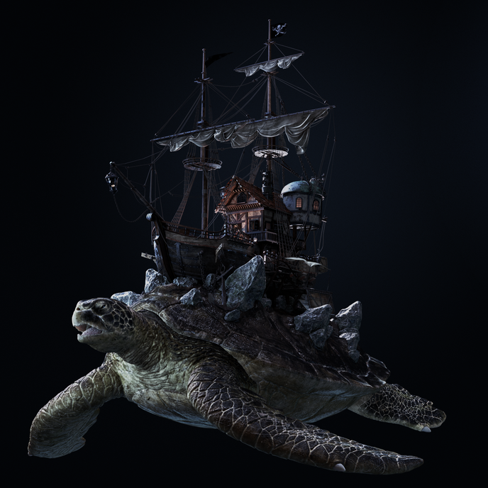 turtle219.png