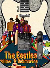 Guitares customisées limitées 20 exemplaires