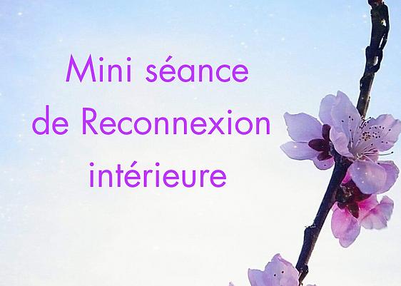 Mini séance afficheg.png