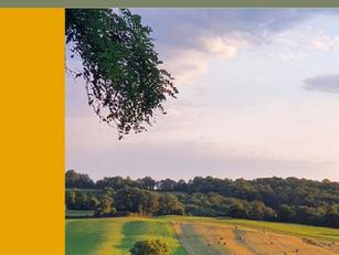 Plan d'Actions 2021 : le rebond pour conserver la longueur d'avance en matière de Slow Tourisme !