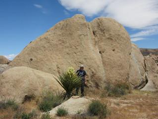 Megafelsen im 'Joshua Tree National Park'