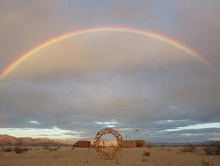 Regen in der Mojave