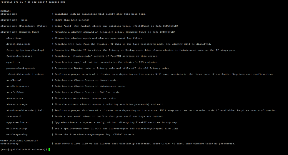 screenshot of cluster-mgr help output