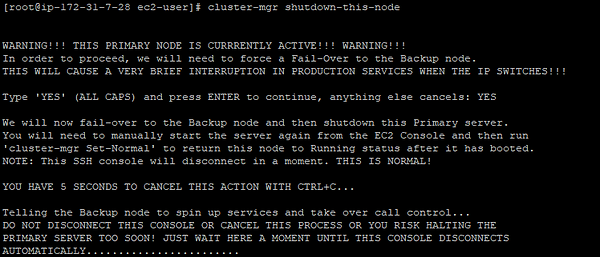 screenshot of cluster-mgr shutdown-this-node