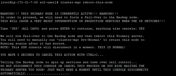 screenshot of cluster-mgr reboot-this-node