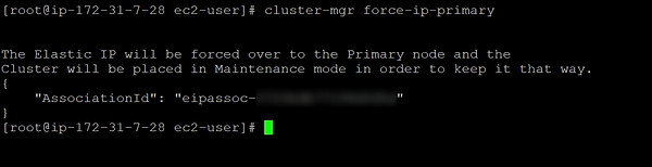 screenshot of cluster-mgr force-ip-primary