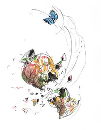 Butterflies in December
