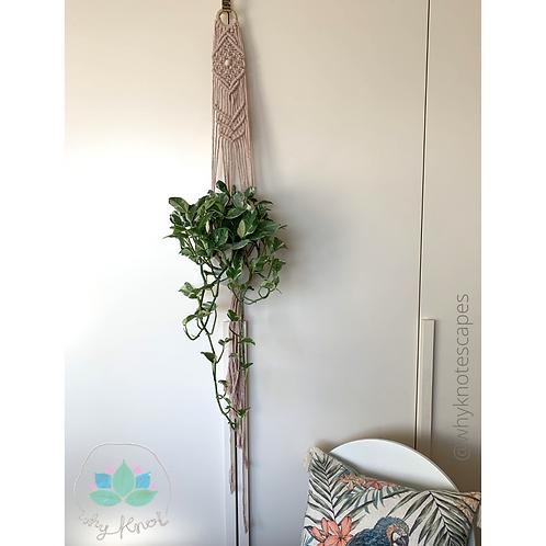Tilt Away Plant Hanger