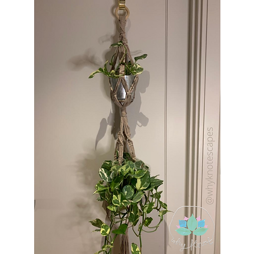 Keep Twisting Plant Hanger