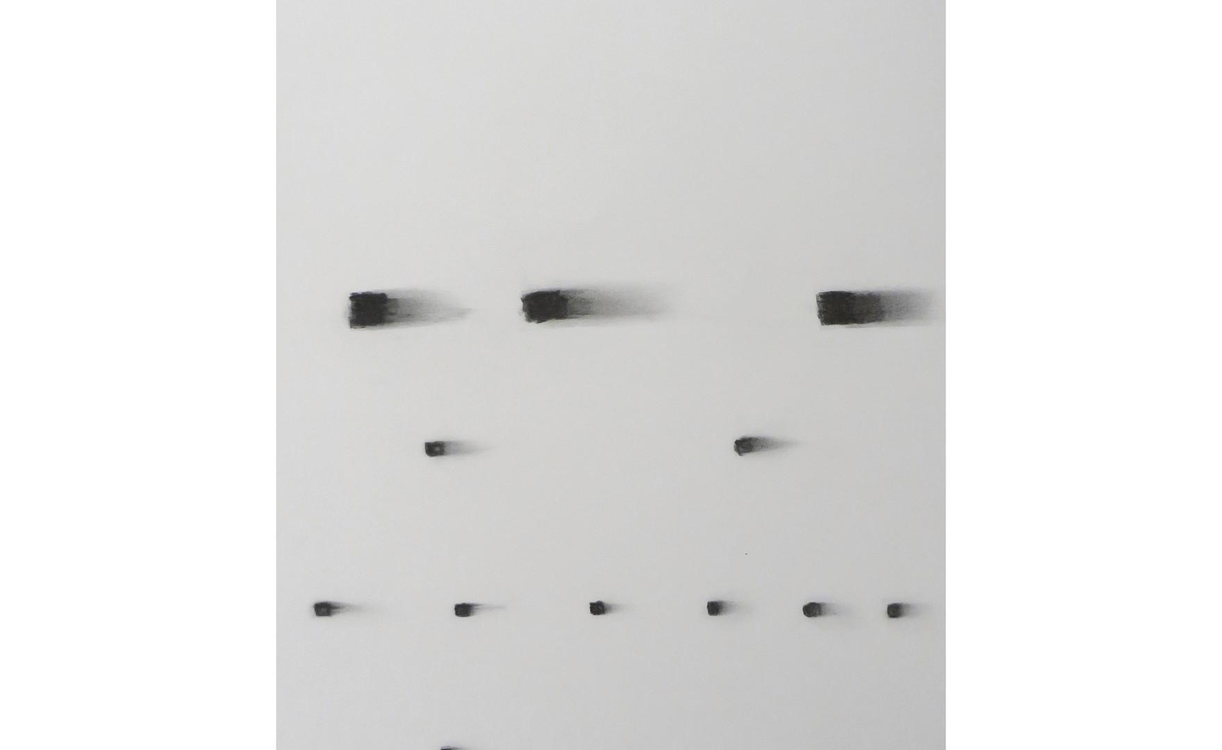Italo Bressan, L'ombra e la polvere, 2011