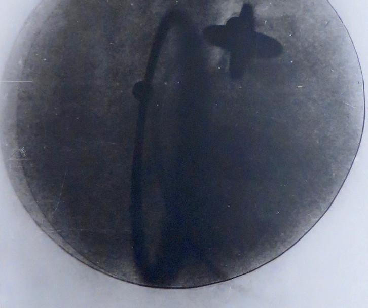 Moholy Nagy Lazlo, Fotogramma, 1922-26