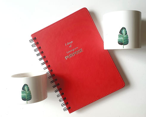 7 Days on Purpose Daily Journal