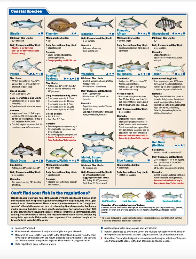 Florida State Water Fishing Regulations 2021
