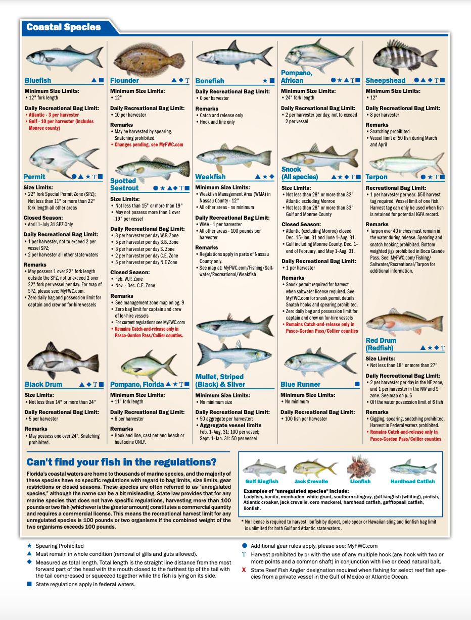 Florida State Water Fishing Regulations 2021