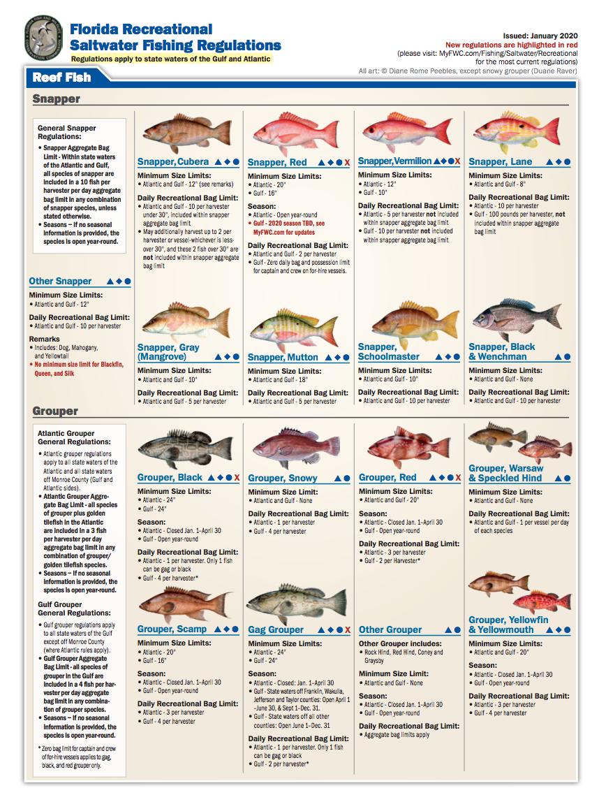 Florida Recreational Fishing Regulations