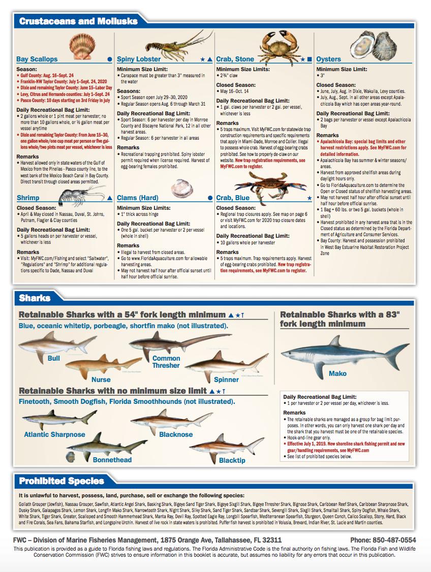Florida Rereational Fishing Regulations