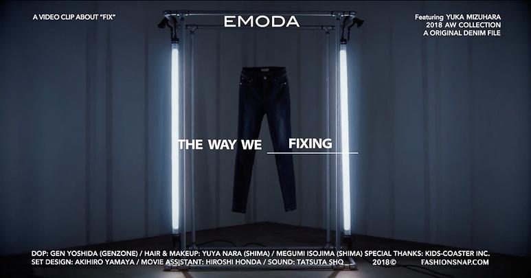 EMODA_2.png