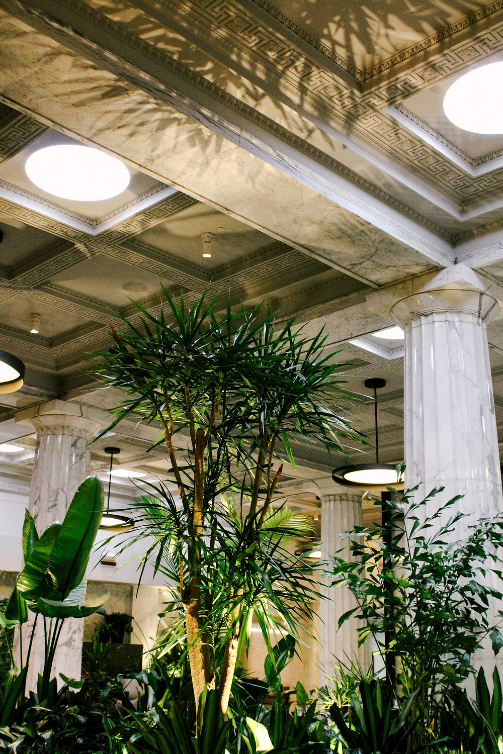 Hotel Emery Lobby with Plants