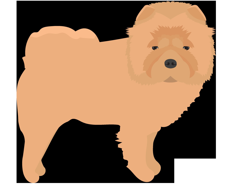 XL Dog (75+ lbs) Grooming