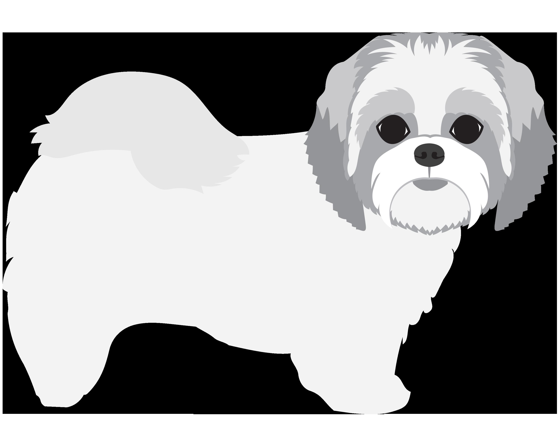 Small Dog (Less than 30 lbs)