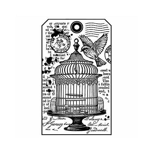 Tampon mousse cage à oiseau et écriture