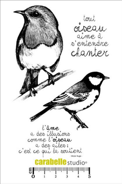 Tampon tout oiseau...