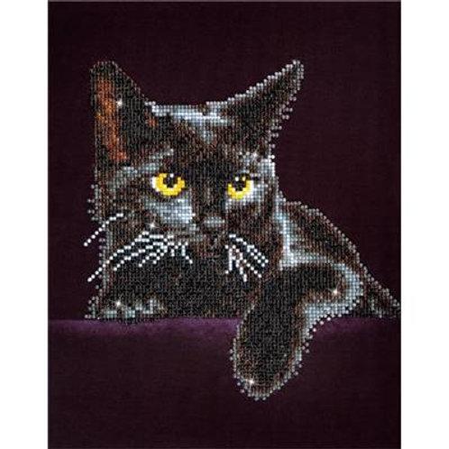Broderie diamant chat noir