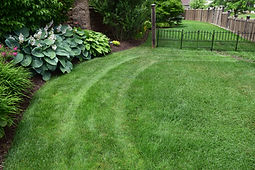 Landscaping Rockford, lawn mowing rockford, lawn care rockford, snow plowing rockford, parking lot sweeping rockfrd, weed control rockford, fertilizer rockford, snow removal rockord, irigation rockford