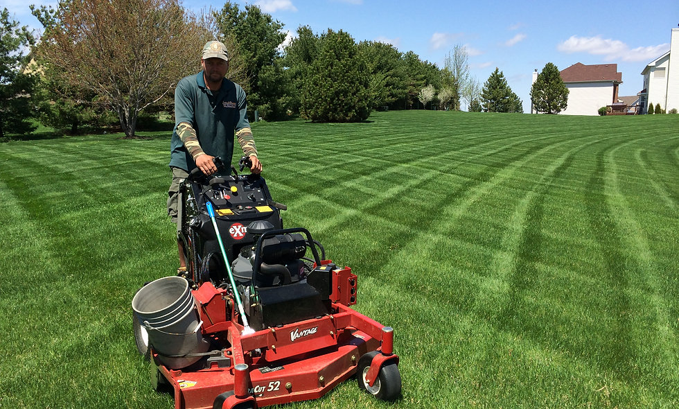 Mowing Large Seasonal