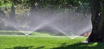 Sprinklers in a field