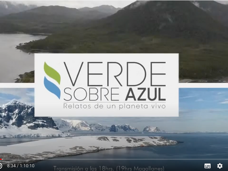 Conferencia via Youtube.com/Centro de investigación IDEAL Verde sobre azul: Relatos de un planeta