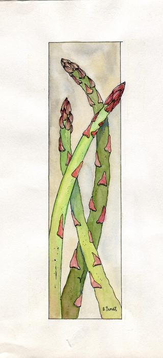017-sum-21-watercolors-food-prey-ad_ink_