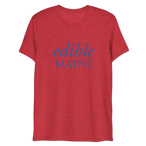 Men's t-shirt (blue logo)