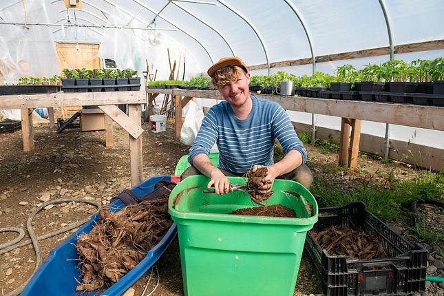 Sowing seeds, Growing Flowers, Finding Joy in Rural Maine