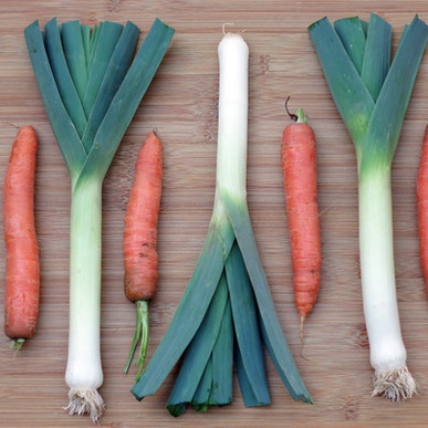 Garden Carrots and Leeks Au Gratin